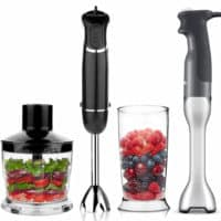 best immesion blenders